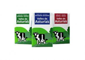 alterna valles de asturias